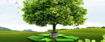SUSTAINABLE TREE