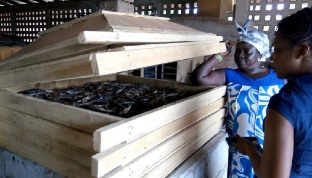 ISEES TO PROMOTE IMPROVED FISH SMOKING AND MANGROVES CONSERVATION AMONG WOMEN IN BOMIGO ISLAND COMMUNITY – WITH SUPPORT FROM CANADIAN FUND FOR LOCAL INITIATIVES