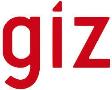 giz(edit)