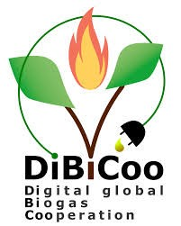 dibicoo logo jpeg